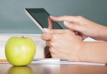 online diyet nedir