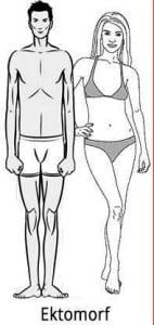 ektomorf vücut tipine göre beslenme