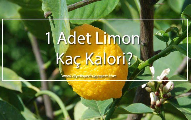 limon kalorisi
