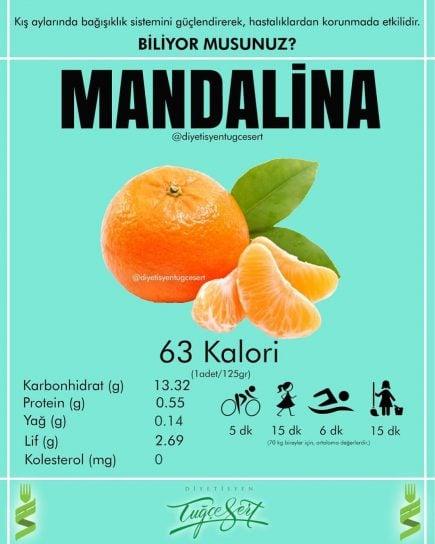 mandalina kalorisi